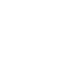icon-plaatsing